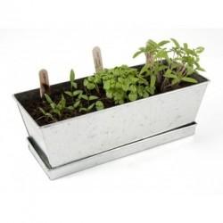 Jardinière de petits légumes à croquer (à faire pousser) - Le kit