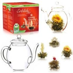Coffret théière et 4 fleurs de thé bio